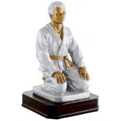 Trophée Judoka personnalisé