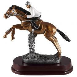 Trophée Equitation Homme - Saut d'Obstacle
