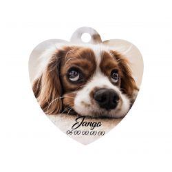 Médaille Coeur pour animaux à personnaliser