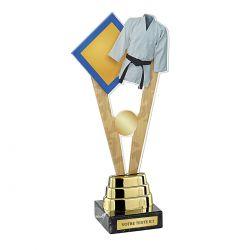 Trophée Sports de Combat - Acrylique couleur