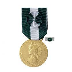 Médaille Honneur 35 ans Régionale, Départementale et Communale